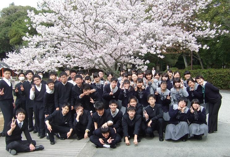 橿原神宮の深田池周辺は桜が見ごろです。毎年この時期にお花見に行ってクラスの親睦を深める学年があります。